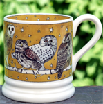Emma Bridgewater ½ pint mug owls all over