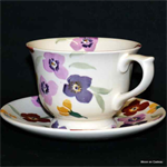 Emma Bridgewater. large cup & saucer wallflower