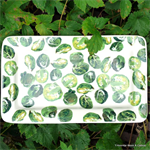 Sprouts medium oblong plate, Emma Bridgewater
